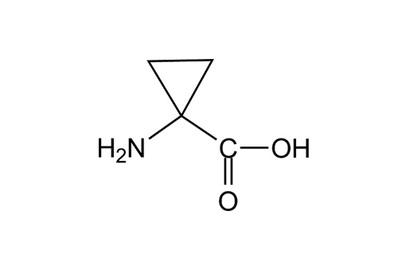 1-Aminocyclopropane-1-carboxylic acid, ≥98%