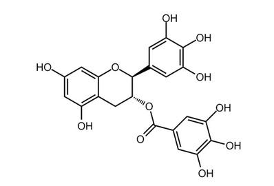 (−)-Gallocatechin gallate, ≥99%