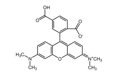 6-Carboxytetramethylrhodamine, ≥99%