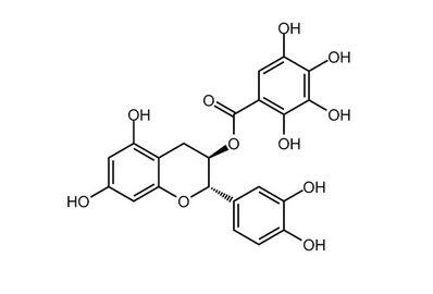 (−)-Catechin gallate, ≥98%